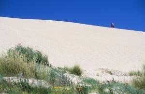 Sand Dune, Tarifa, Spain