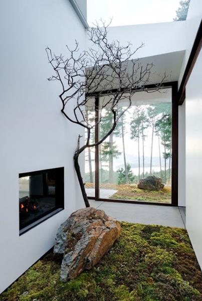 Trees inside