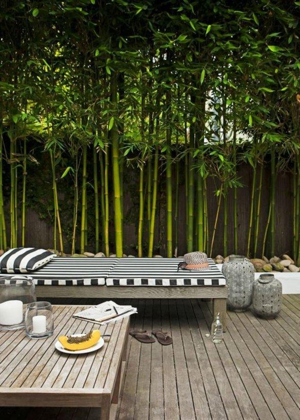 une_terrasse_bordee_de_bambous